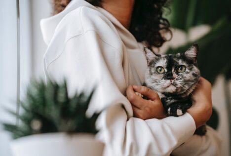 kat in armen vrouw