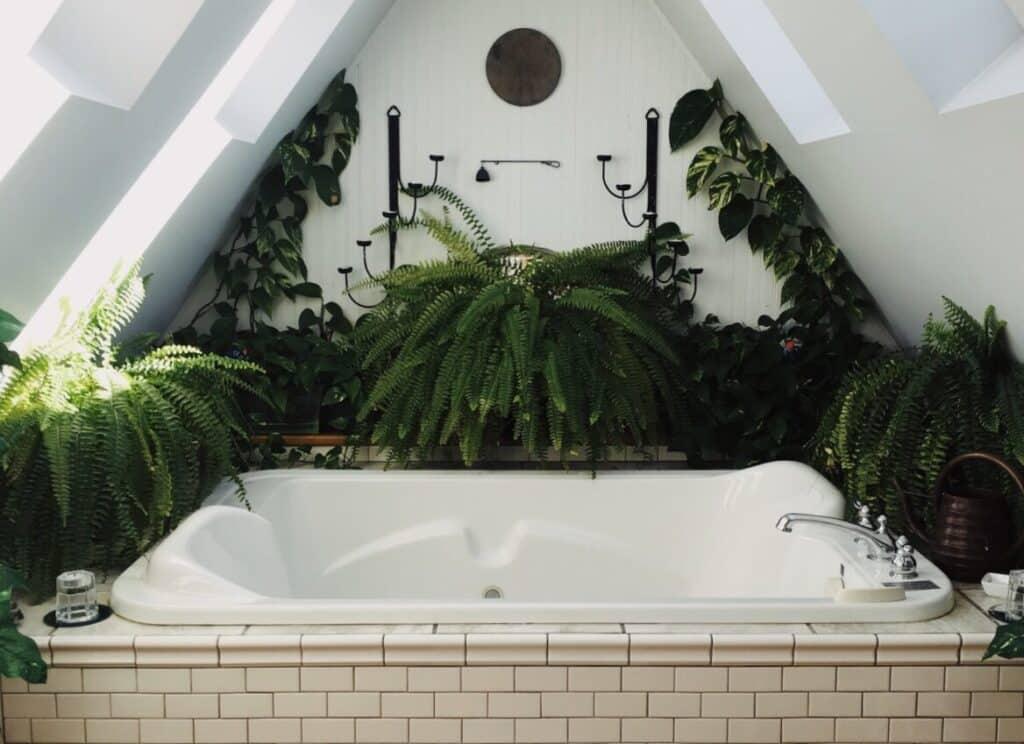 badkamer met planten