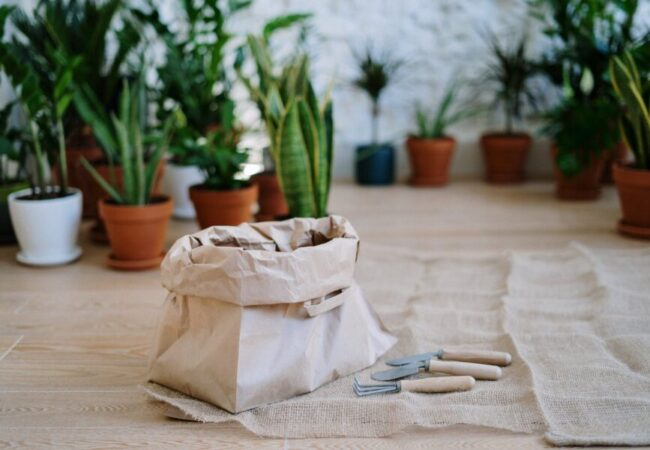 plantenvoeding in zak