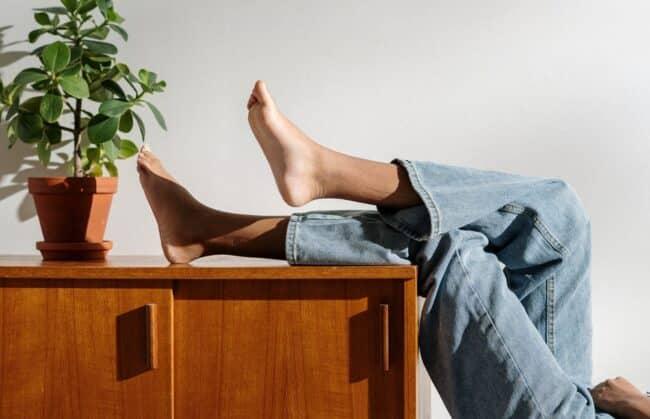 plant op kast met benen