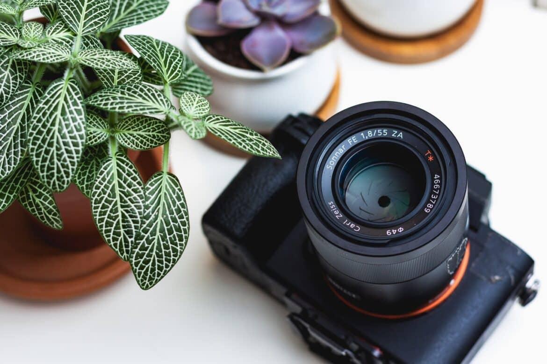 camera en plant op tafel