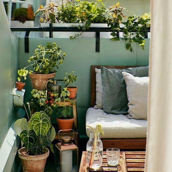 buitenplanten op balkon